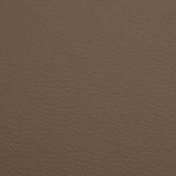 K318400 | Faux leather | Schauenburg