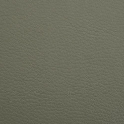 K318780 | Faux leather | Schauenburg
