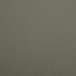 K318780 | Finta pelle | Schauenburg