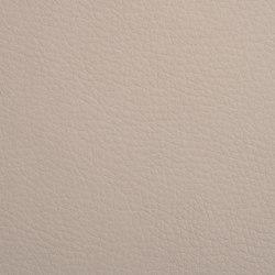 K318905 | Faux leather | Schauenburg