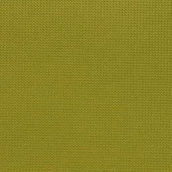 K320145 | Similicuir | Schauenburg