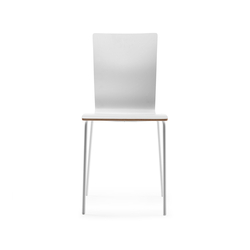 Dane Chair | Multipurpose chairs | ONDARRETA