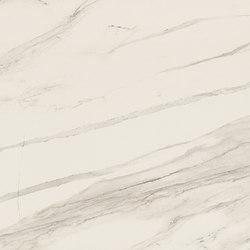 Stones & More Stone Calacatta | Ceramic tiles | FLORIM