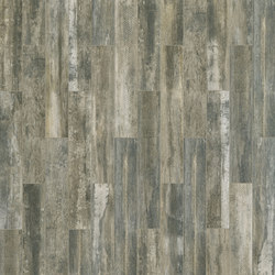 Paint Wood Ash | Tiles | Cerim by Florim