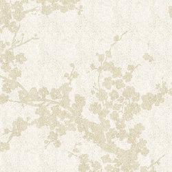 Accademia ac2400 | Rugs / Designer rugs | Sartori
