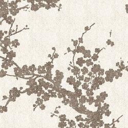 Accademia ac2418 | Rugs / Designer rugs | Sartori