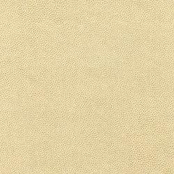 Buckaroo 8103 01 Iced Milk | Faux leather | Anzea Textiles