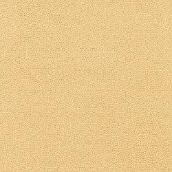 Buckaroo 8103 02 Blonde Roast | Finta pelle | Anzea Textiles