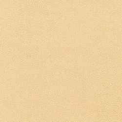 Buckaroo | Finta pelle | Anzea Textiles