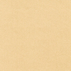 Buckaroo | Faux leather | Anzea Textiles