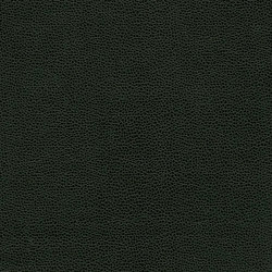 Buckaroo | Going Green | Faux leather | Anzea Textiles