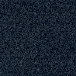 Buckaroo | Blue Book | Faux leather | Anzea Textiles