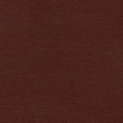 Buckaroo | Redwood Fence | Faux leather | Anzea Textiles
