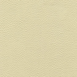 Bull's Eye 8101 01 French Vanilla | Finta pelle | Anzea Textiles