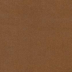Bull's Eye | Granola Crunch | Faux leather | Anzea Textiles