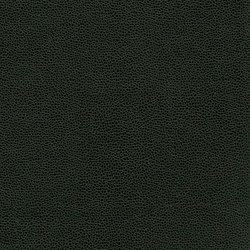 Bull's Eye | Cuero artificial | Anzea Textiles