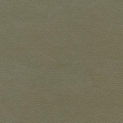 Calf Crazy | Eco Moss | Faux leather | Anzea Textiles
