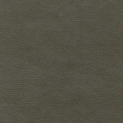 Calf Crazy | Sea Otter | Faux leather | Anzea Textiles