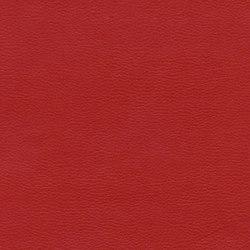 Calf Crazy | Team Spirit | Faux leather | Anzea Textiles