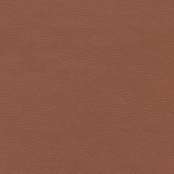 Calf Crazy | Hazelnut | Faux leather | Anzea Textiles