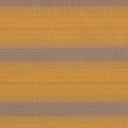 Hold the Line | Yellow Line | Tessuti | Anzea Textiles