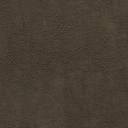 Mammoth Deception 8102 02 Fashion Khakis | Faux leather | Anzea Textiles