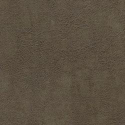 Mammoth Deception   Fashion Khakis   Faux leather   Anzea Textiles