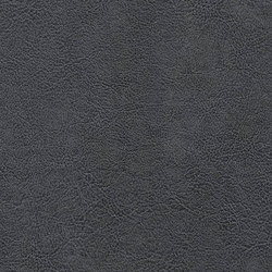 Mammoth Deception | Almost Black | Faux leather | Anzea Textiles