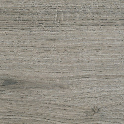 Bio Timber | Oak Grigio | Lastre | Lea Ceramiche