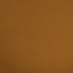 Shiny Hide 8107 04 Saddle | Faux leather | Anzea Textiles