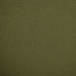 Shiny Hide 8107 12 Collard Greens | Faux leather | Anzea Textiles