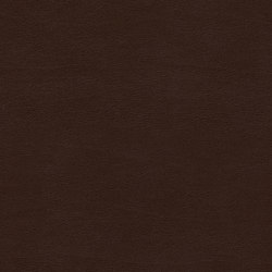 Shiny Hide 8107 13 Roasted | Faux leather | Anzea Textiles