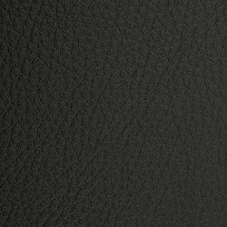 L1030301 | Faux leather | Schauenburg