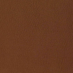 K310265 | Faux leather | Schauenburg