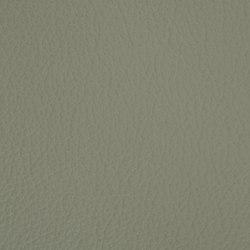 L1020207 | Cuero artificial | Schauenburg