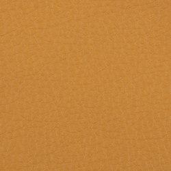 L1030304 | Natural leather | Schauenburg