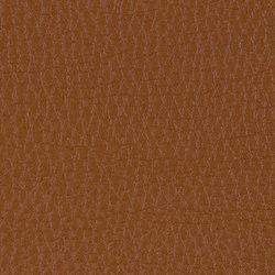 L1030307 | Natural leather | Schauenburg