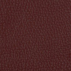 L1030309 | Natural leather | Schauenburg