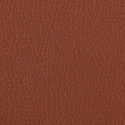 L1030310 | Natural leather | Schauenburg