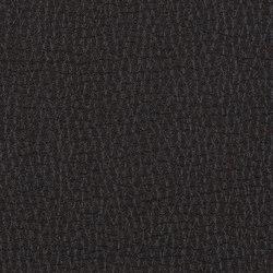 L1030314 | Natural leather | Schauenburg