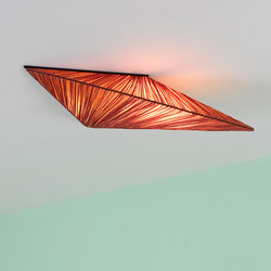 Zooid ceiling | General lighting | Aqua Creations