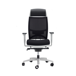 Spirit Air executive | Office chairs | sitland