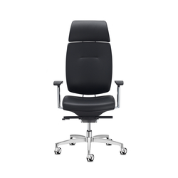 Spirit executive | Office chairs | sitland