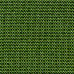 Novum Moss | Tessuti | rohi