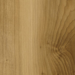 Life Oak | Carrelages | Caesar
