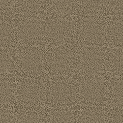 Accor 1032 Pearl | Tappeti / Tappeti d'autore | OBJECT CARPET
