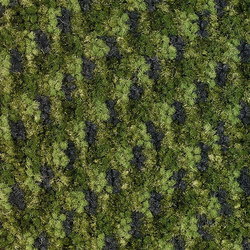 Shift 1252 | Moquette | OBJECT CARPET