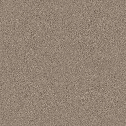 Silky Seal 1229 Dust | Formatteppiche | OBJECT CARPET