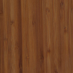 Parklex Floors HyTek Finish | Caramel Bamboo | Placages | Parklex