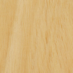 Parklex Floors HyTek Finish | Natural Ayous | Veneers | Parklex